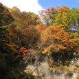 吹割の滝13