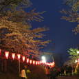 2006 高田公園 11