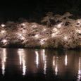 2006 高田公園 17