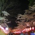 2006 高田公園 16