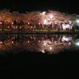 2006 高田公園 18