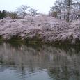 2006 高田公園 02