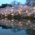 2006 高田公園 03