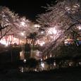 2006 高田公園 31