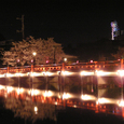 2006 高田公園 43