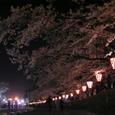 2006 高田公園 38
