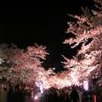 2006 高田公園 35