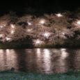 2006 高田公園 26