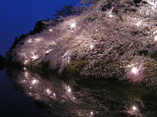 2006 高田公園 10