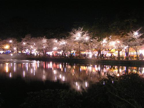 2006 高田公園 19