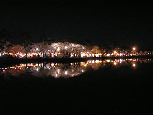 2006 高田公園 44