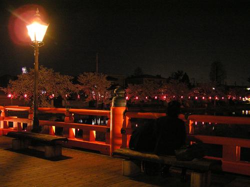 2006 高田公園 45