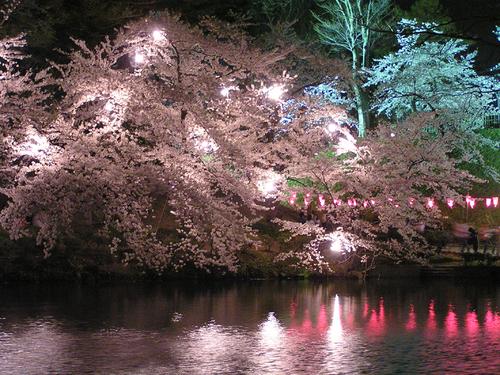 2006 高田公園 21