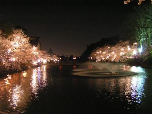 2006 高田公園 22
