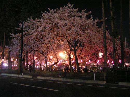 2006 高田公園 39