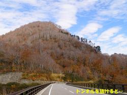 Uon012