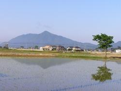 Tan010